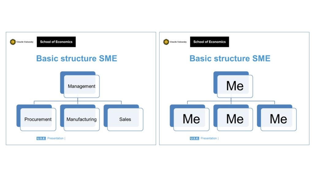 what an SME should look like and what it really looks like